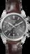 TAG Heuer Carrera Brown Alligator Leather Steel Grey